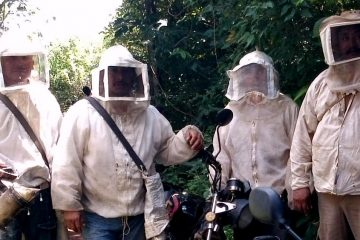 Desarrollo empresarial en apicultura