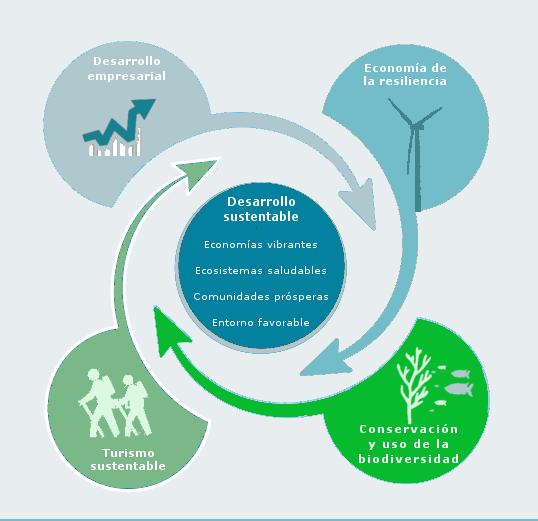 Teoría de cambio Biosfera Desarrollos