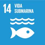 Objetivo de Desarrollo Sostenible 14. Vida Submarina