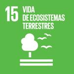 Objetivo de Desarrollo Sostenible 15: Vida de Ecosistemas Terrestres